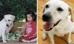 영화 '마음이'의 주인공 강아지 '달이'가 세상을 떠났다