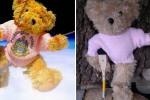 과학실험 때 우주로 보낸 곰인형이 다시 돌아왔다