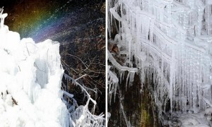 혹한의 추위에 '얼음 왕국' 된 대구의 실시간 모습 (사진 8장)