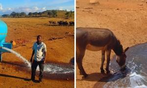 가뭄으로 죽어가는 야생동물 위해 매일 '물탱크' 배달하는 남성