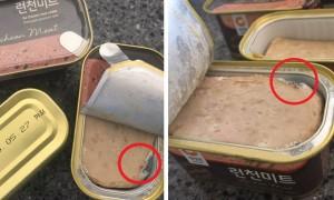 선물세트 '청정원 런천미트' 햄에서 나온 '곰팡이'
